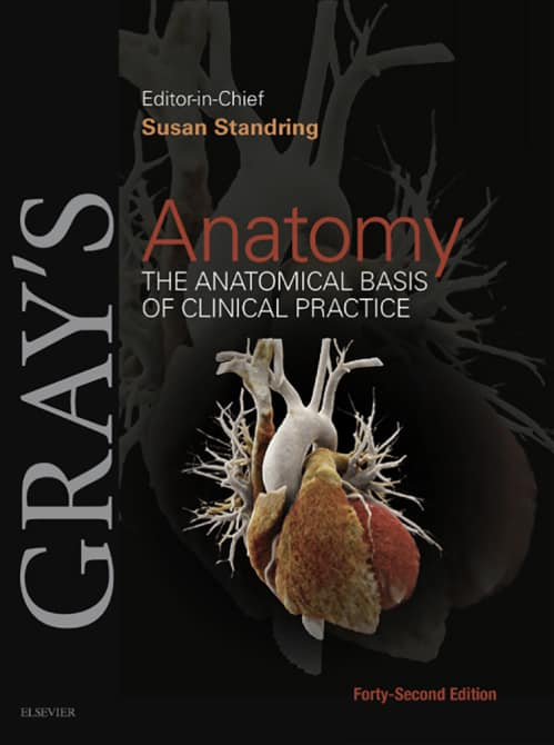 Gray's Anatomy - The Anatomical Basis Of Clinical Practice
